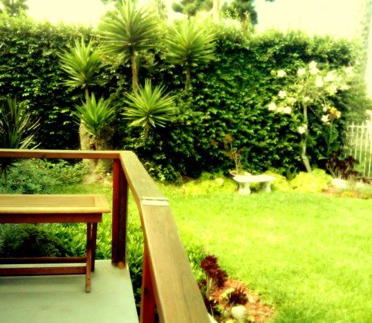 Khu vườn nhà hắn buổi sớm